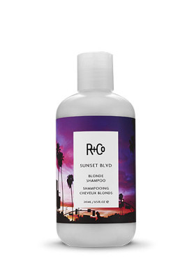 R+Co Sunset BLVD Blonde Shampoo small image
